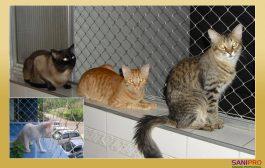 Redes Mascotas, Redes Perros, Redes Gatos, Protección Mascotas