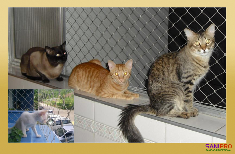Redes-Mascotas-Redes-Perros-Redes-Gatos-Proteccion-Mascotas